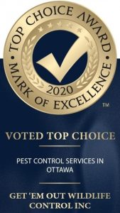 Top Choice Award